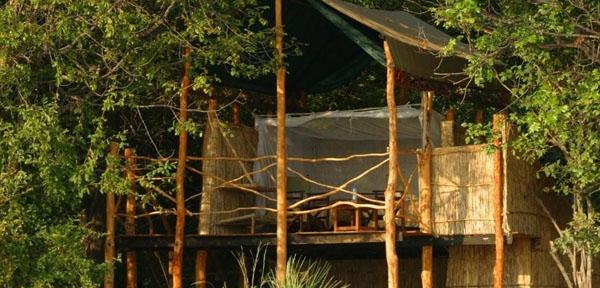 Island Bush Camp2
