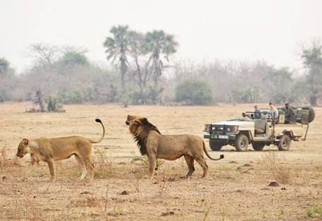 LOWER ZAMBEZI NATIONAL PARK1