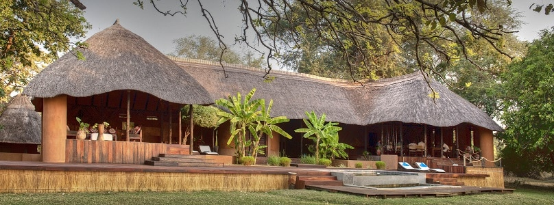 The Luangwa Encounter1